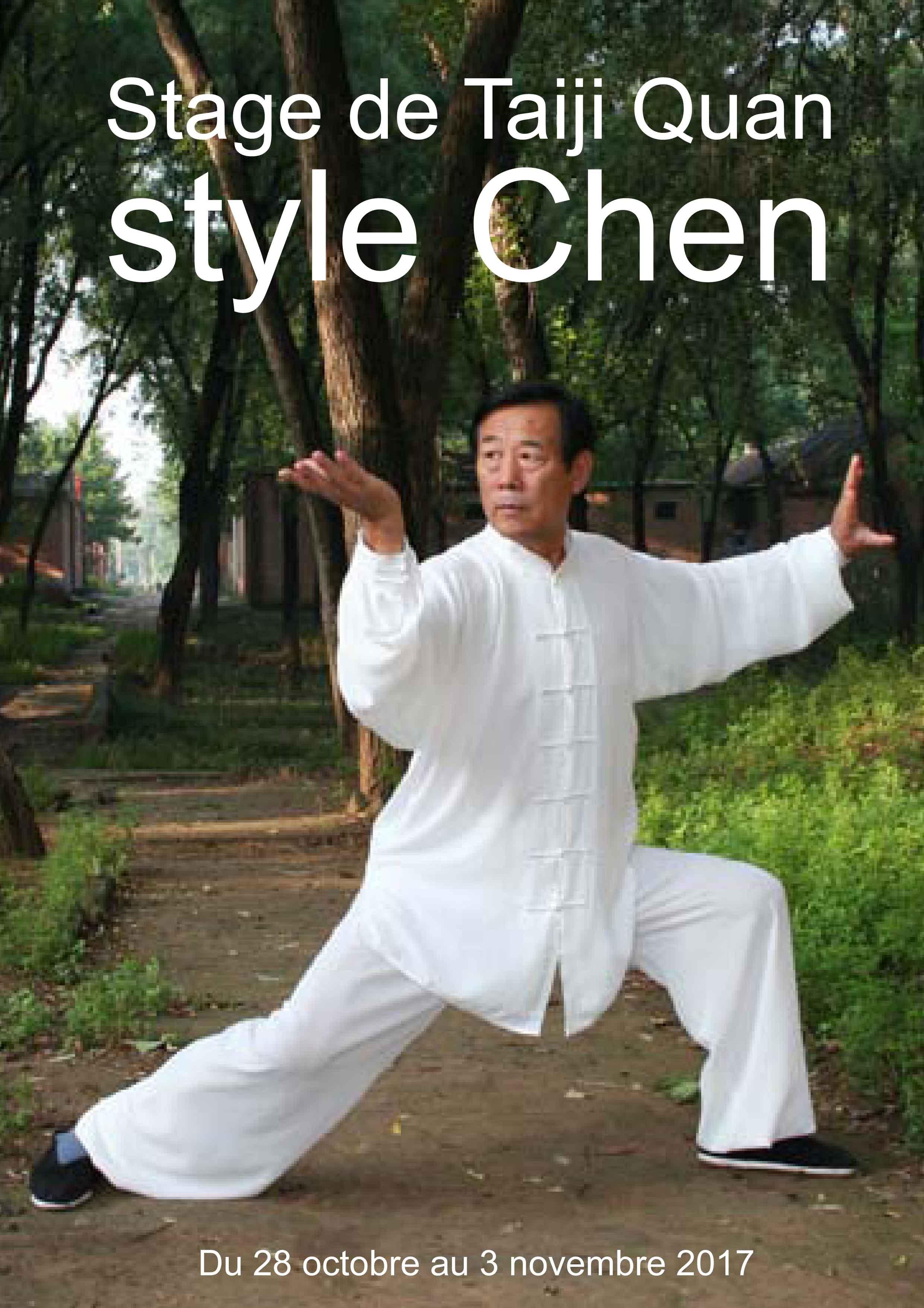 Stage-de-Taiji-Quan-style-Chen