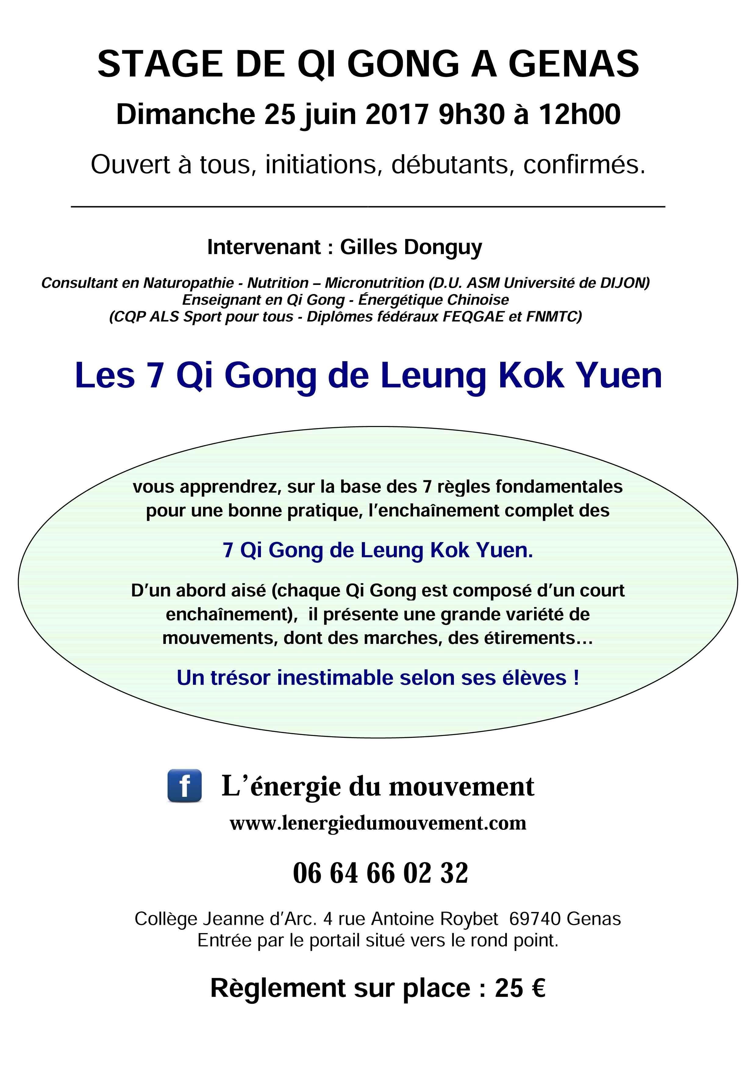 7-Qi-Gong-de-Leung-Kok-Yuen