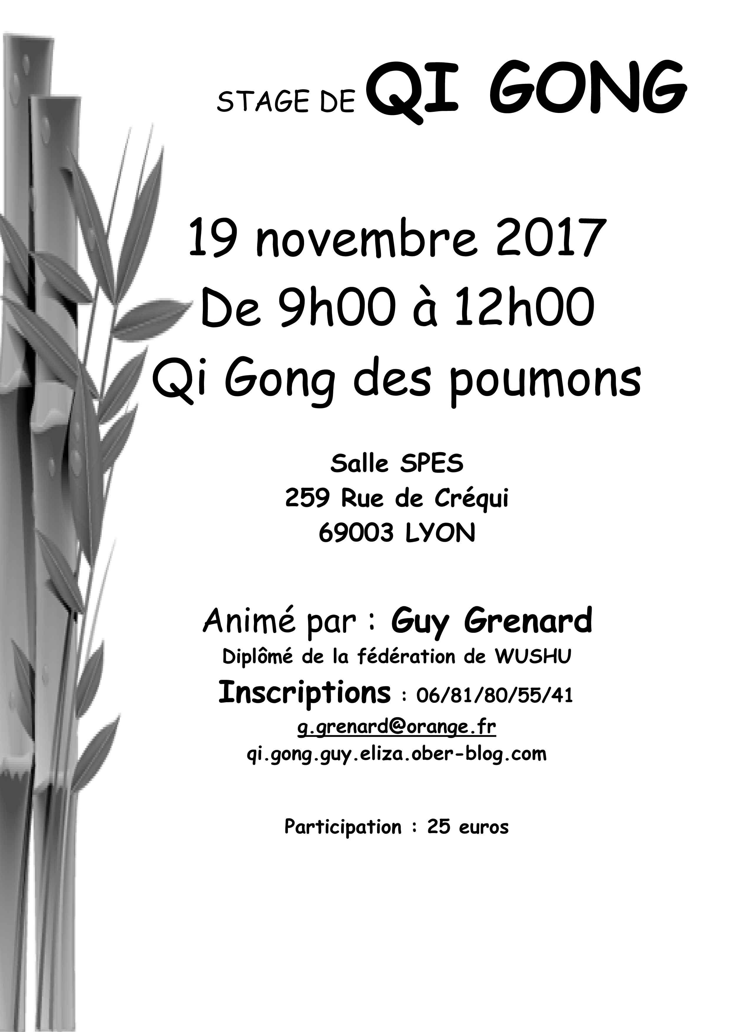 qi-gong-des-poumons - blogetrebien.fr