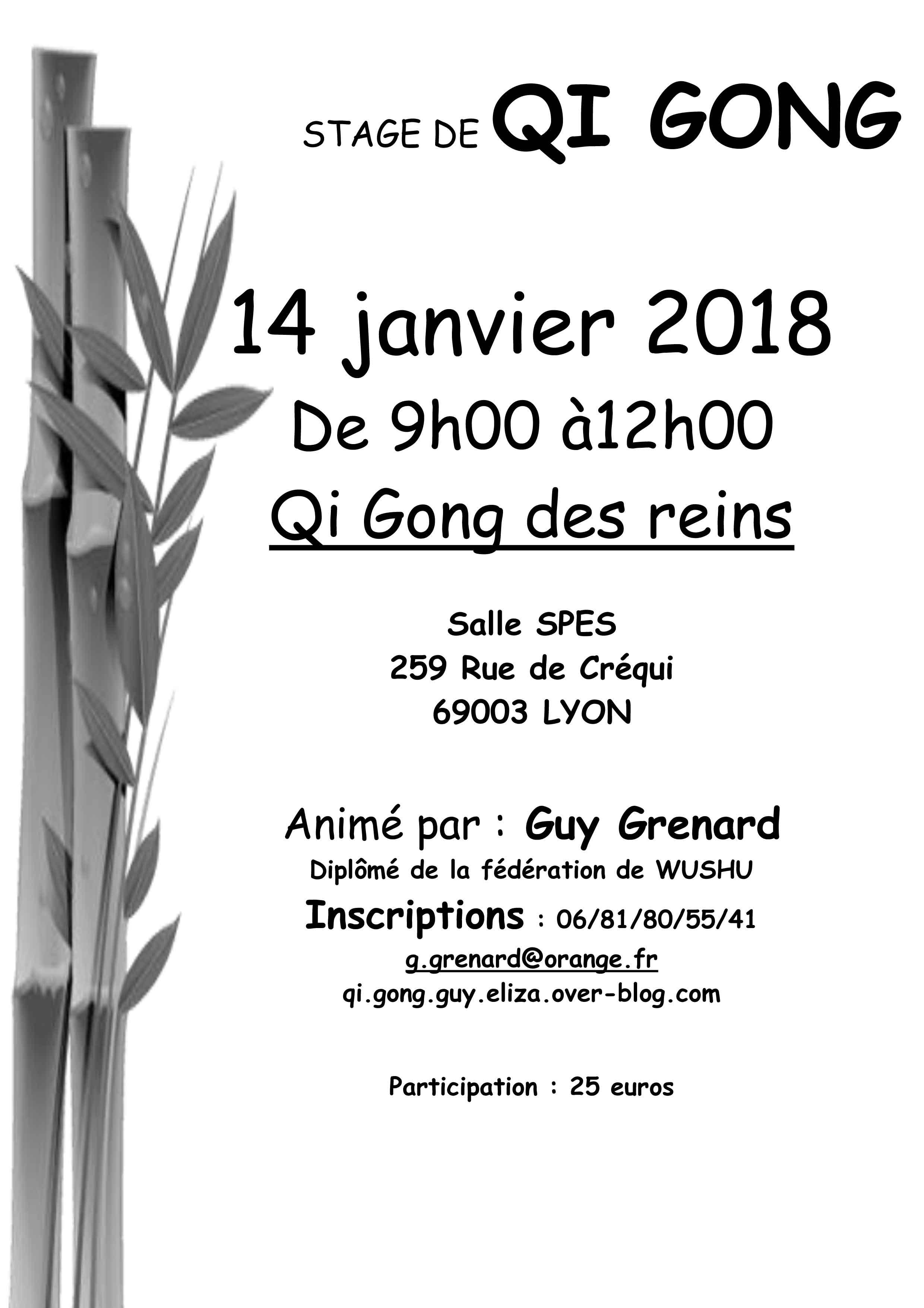 qigongdesreins208-2 - blog etre bien