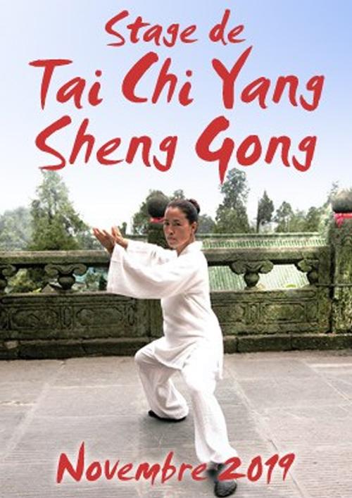 stage-de-tai-chi-yang-sheng-gong-novembre-2019-2